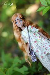 IMG_8234 (Cleo6666) Tags: lana lillycat cerisedolls marron glacé bjd doll chibbi