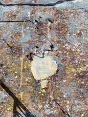 What Is What (jaxxon) Tags: 2017 d610 nikond610 jaxxon jacksoncarson nikon nikkor lens nikon50mmf28g nikkor50mmf28g 50mmf28 50mm niftyfiftyprime fixed pro abstract abstraction plaster wall texture surface peelingpaint antique decay weathered distressed damage damaged urban