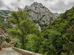 road into gorge (maryannenelson) Tags: france gorge rocks view cliff dropoff landscape wall bikers
