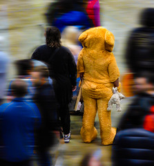 Living in Teddy Time (Steve Taylor (Photography)) Tags: teddy bear rabbit animal costume art digital people newzealand nz southisland canterbury christchurch armaggedon