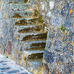 Ancient Steps (jaxxon) Tags: 2017 d610 nikond610 jaxxon jacksoncarson nikon nikkor lens nikon50mmf28g nikkor50mmf28g 50mmf28 50mm niftyfiftyprime fixed pro multifarious square squared lichen wall stairs old ancient stairway stone rock