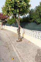 Playa Flamenca, Alicante (Pascal Heymans) Tags: alicante costablanca espagne españa fotokunst orihuelacosta playaflamenca spain spanien spanje urbanizaciónplayaflamenca contemporarylandscape photo photography sociallandscape urban urbanlandscape es canoneos6d pascalheymans