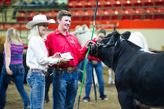 StampedeDay10-45 (Calgary Stampede) Tags: 2016 department events mcdonalds presentations sponsorship steerclassic calgary ab canada can