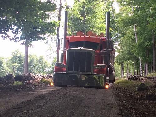Log time