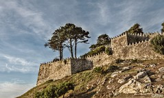 La gran fortaleza (Franco D´Albao) Tags: francodalbao dalbao nikond60 walls murallas fortaleza fortress monterreal bayona galicia wall defensa defence montedoboi