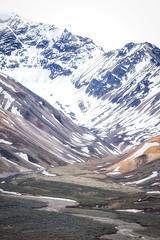 Polychrome Study (frostnip907) Tags: alaska nature wilderness mountains mountain landscape denali denalinationalpark denalinationalparkandpreserve misty mist fog foggy