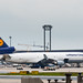 MD11F D-ALCE LufthansaCargo 20170519 Frankfurt