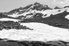 Yokum Basin, Mt. Hood (Scott Withers Photography) Tags: ramonafallstoyocumridge mthood oregon sonya7rii sonyfe2470mmf28gm