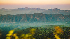 morning on mount (Flutechill) Tags: nature mountain forest landscape sunset scenics outdoors hill mountainpeak fog tree autumn morning sunrisedawn beautyinnature mountainrange dawn sky sunlight mist thailand chiangmai doiphahompoknationalpark
