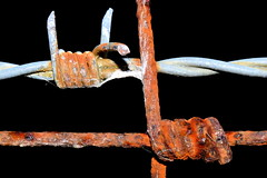 Rust and Rusty (donjuanmon) Tags: donjuanmon nikon fencedfriday fence rust barb wire twist twisted hff