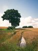 2017-07-26_14-17-15 (torstenbehrens) Tags: landschaft stolpe kreis plön schleswigholstein deutschland olympus ep1 digital camera