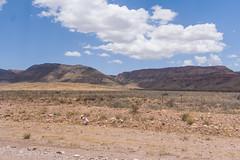 Namibian desertscape. (annick vanderschelden) Tags: namibia hardap naukluft mountains hills sand rocks arid semiarid desert vegetation grasses sky bluesky clouds sunlight hot soil dust bush gravelroad fence