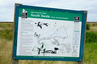 A walk from Whitstable to Faversham along the coast. Castle Coombe Bird Reserve - archiving.
