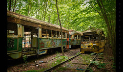 Neglected and Abused (Whitney Lake) Tags: streetcar vandalism graffiti overgrown forest woods trolley railroad rurex urbex decay abandoned 21 explored