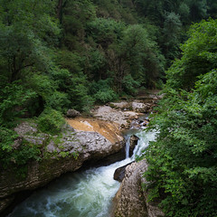 The Forest River (Maxim Shelkov) Tags: nature travel trip beautiful rain ravine russia good river water forest tree trees rock stones landscape mountains mountain mountainside nikon d3100 south sky summer weekend tour tourism light outdoor