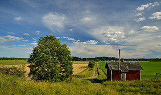 Domestic Animal Farm in Haltiala. #Finland #Summer