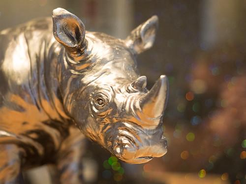 Rhino Is My Namo