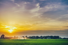 Sunset // Grassland in Lunteren Netherlands (Merlijn Hoek) Tags: sunset sun gras grasland grassland wateren besproeien groen geel landschap landscape