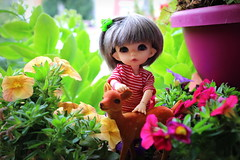 F is for Friendly Fawn (cheesemoopsie) Tags: abby ante pukifee pukifeeante fairyland doll fawn deer flowers garden