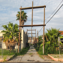 Loved these wooden h-frame powerline structures in this subtropical backalley! (Tim Kiser) Tags: 2014 20140716 26thstreet galveston galvestoncounty galvestoncountytexas galvestonisland galvestontexas galvestonlandscape houstonmetropolitanarea img8791 july july2014 palmae texas texaslandscape alley alleylandscape backalley curbs downtown downtowngalveston easttexas easterntexas electriclinestructures electriclinetowers electriclines electricpoles electrictowers evening eveningsun greaterhouston hframepowerlinetowers hframestructures hframeutilitytowers hframes kerbs landscape oneway onewaysigns onewayalley overheadelectriclines overheadpowerlines palmtrees palms partlycloudy paved pavement powerlinestructures powerlinetowers powerlines southeasttexas southeasterntexas stormdrain telephonepoles urbanlandscape utilitypoles utilitystructures utilitytowers unitedstates us txtchg