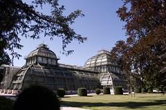 Palmenhaus, Schönbrunn 1 (Mount Fuji Man) Tags: vienna austria 2017 wien thecityofdreams bundesland unedited nophotoshop