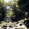 Mountain stream (mitsumine_884) Tags: rollei rolleiflex rolleiflex35fplanar rolleicr200 cr200