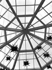 Sunroof (santoscinderella) Tags: stars iphone lines angle photography shot glass aventura florida miami beautiful details design mall dangling architecture flowers view windows grey blackandwhite sun sunroof roof sky
