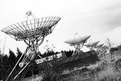 Drenthe (The Netherlands) - Zwiggelte - Radiosterrenwacht Westerbork - 3 (Bjorn Roose) Tags: bjornroose björnroose drenthe nederland niederlände thenetherlands paysbas radiotelescope radiotelescoop antenna antenne westerbork radar vla sterrenwacht observatory