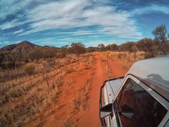Larapinta Trail Waspcam-6
