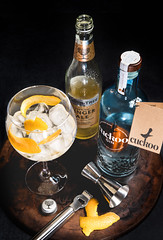G&G - Gin & Ginger (Ruthie H) Tags: gin ginger gingerale cuckoo cuckoogin lancashire drink stilllife cocktail alcohol fevertree