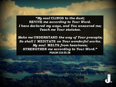 Psalm 119:25-28 (pastorjoshmw) Tags: psalm119 psalm1192528 scripture bible calltoworship