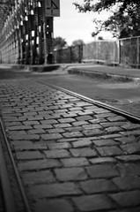 Cobblestones (Kaster-Petsai) Tags: budapest rail stone cobble cobblestone sziget 2017 3233 qss3233 qss noritsu photography film f14 50mm nikkor f100 nikon blackandwhite black white bw iso50 50 pan f plus ilford monochrome