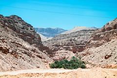 IMG_0900 (ahmed_Maher) Tags: egypt hurghada elgouna egyptian roadtrip mountain hills rocks nature desert wild documentary thisisegypt