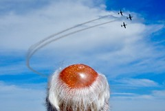 (desbyrnephotos) Tags: airshow airplanes blue sky bald hair man smoke air tan sun sunny bray ireland seafront head outside sea resort irish display photo photography nikon color colour ocean pilot tourist flickr gallery explore