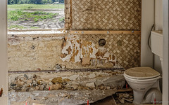 Restroom with a view (frankdorgathen) Tags: outdoor indoor lostplace devastation demolished nature tree view window toilet wc restroom room home house relocation decay abandoned