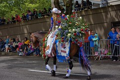 Parade (swong95765) Tags: queen beauty horse parade floral roses riding audience