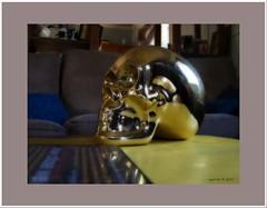 skull orton 1 (agphoto100) Tags: skull orton effect kodak z1015