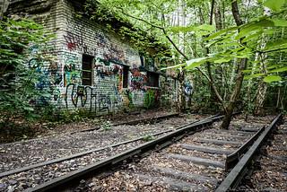 Berlin Natur-Park Schöneberger Südgelände