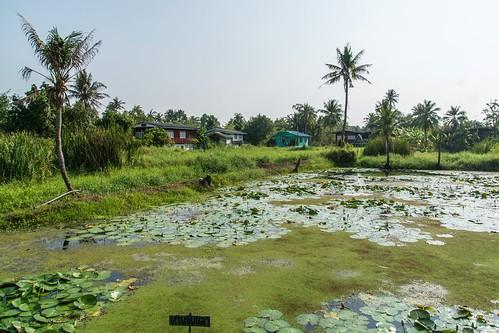 nonthaburi - koh kret - thailande 48
