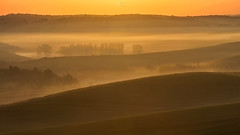 Morning Layers (<-Y->) Tags: morning sunrise orange layers 650d magicdrainpipe fog medvesalja impression nature outdoor