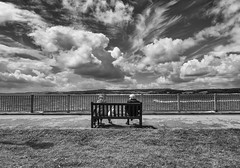 Together (pm69photography.uk) Tags: fuji fujinon fujifilm 16mmf14 xt2 exmouth beach sky blackandwhite bw clouds bench people couple hdr