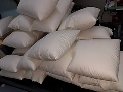 Pillows Down Feathers 80/20%