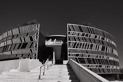 Alésia (nicolaspetit7878) Tags: light ligne marche escalier musé bâtiment outdoor extérieur 1855 nikond5500 nikon bw nb blackwhite noiretblanc alésia museparc architecture