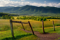 Cades Cove morning light (Thankful!) Tags: cadescove field pasture morninglight hardlight forest mountains fence oldfence homemadefenceposts gsmnp greatsmokymountainsnationalpark