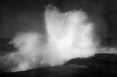 breaking wave  #707 (lynnb's snaps) Tags: 2012 35mm hp5 rodinal xa bw beach film landscape nature ocean rangefinder v700 waves ilfordhp5 blackandwhite bianconero bianconegro blackwhite biancoenero blancoynegro noiretblanc wave coast rockplatform sydney australia spray drama olympusxa fzuiko35mmf28