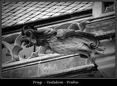 Gargoyles - 20 (fotomänni) Tags: prag prague praha gargoyles gargouille wasserspeier skulptur skulpturen veitsdom blackwhite schwarzweis noirblanc manfredweis