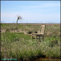 The Chair Out There (Beachhead Photography) Tags: beachheadphotography grass chair flats sky nature outdoors nearsteveston bc delta abandoned discarded thisispartofeverything
