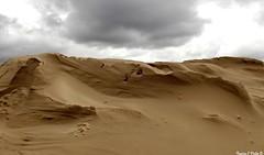 On the sand dune (Noemie.C Photo) Tags: dune sand sable pyla bassin arcachon france ciel sky plage beach light lumiere nuage cloud relief vent wind grains details specifics