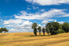 Summer in East Westphalia (Occulytus) Tags: sommer sommertag summer summerday landschaft landscape sonnig sunny owl ostwestfalen eastwestphalia himmel sky wolken clouds