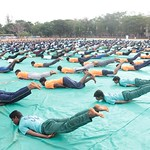 "International_Yoga_Day_2017 (122) <a style=""margin-left:10px; font-size:0.8em;"" href=""http://www.flickr.com/photos/127628806@N02/35782268661/"" target=""_blank"">@flickr</a>"